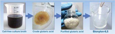 Polimer yapı taşlarının üretiminde petrokimyasal yöntemlere yeni rakip: Bakteriler