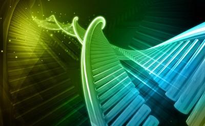 6. DNA bazı keşfedilmiş olabilir mi?