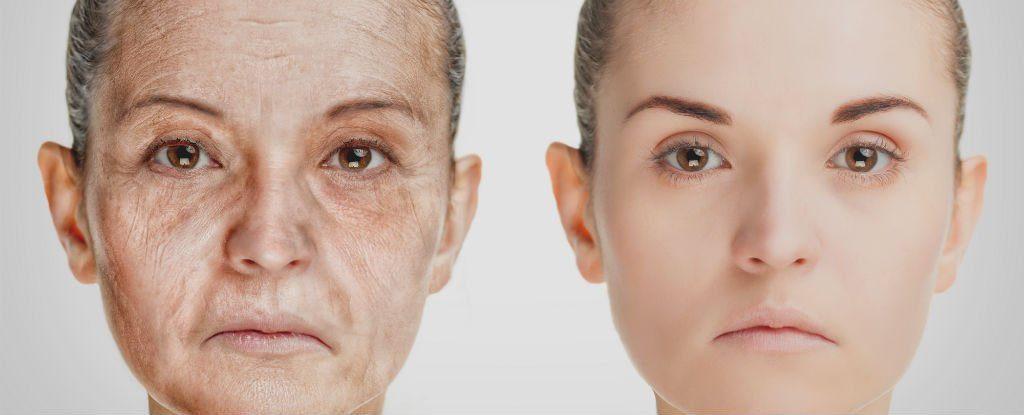 Kişilik Araştırması, 14 ve 77 yaşınızdaki kişiliklerinizin apayrı olduğunu ileri sürüyor