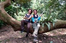 Bilgenur Baloğlu (sol) ve Amy Klegarth Bukit Timah Doğa Koruma Alanı'nda