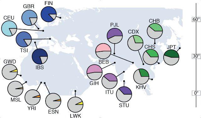 Migrenin Afrika'dan Avrupa'ya göçle ilişkili olduğunu biliyor muydunuz?