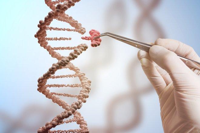 CRISPR'la kas hastalığına çözüm