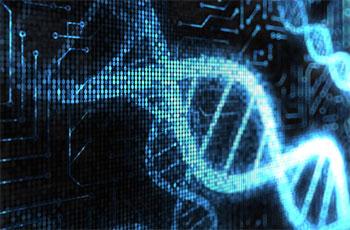 Biyolojik bilgisayar keşfedildi, sırada biyolojik internet var