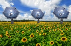 dnews-files-2014-09-sunflower-shaped-solar-panels-670-jpg