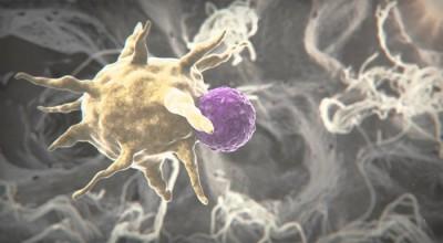 İki önemli insan virüsüne karşı etkili bir ilaç keşfedildi