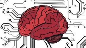 Beynimiz gerçekte ne kadar veri depolayabilir?