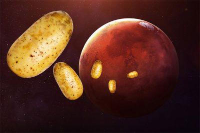Bilim insanlarına göre Mars'ta patates yetişebilir