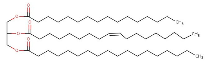 Şekil 1: Tipik bir yağ molekülü.