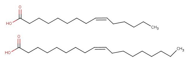 Şekil 3: Omega-6 ve omega-9 için örnek yapılar.