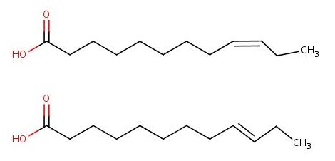 Şekil 4: Cis (üstte) ve trans (altta) omega-3 yağ asidi yapıları.