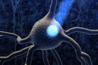 Yeni optogenetik teknolojisi: OptoTrk