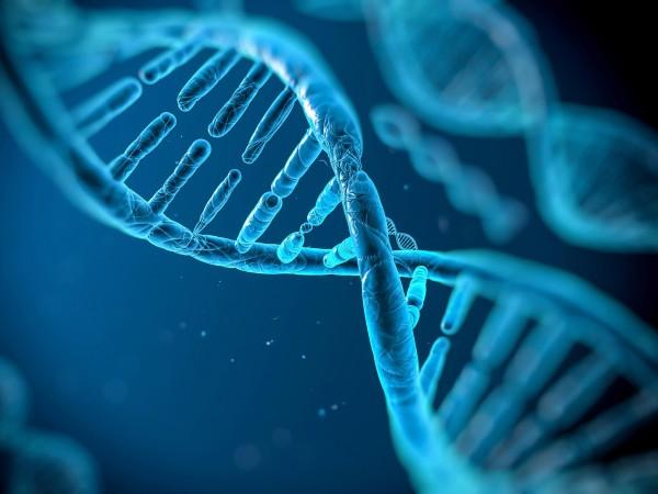 İnsanlarda diğer organizmalara ait 100'den fazla gen bulundu