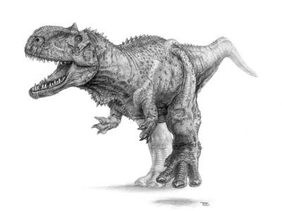 Paleo-illüstratör Todd Marshall