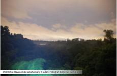 tropik-yagmur-ormaninda-bir-gece-2