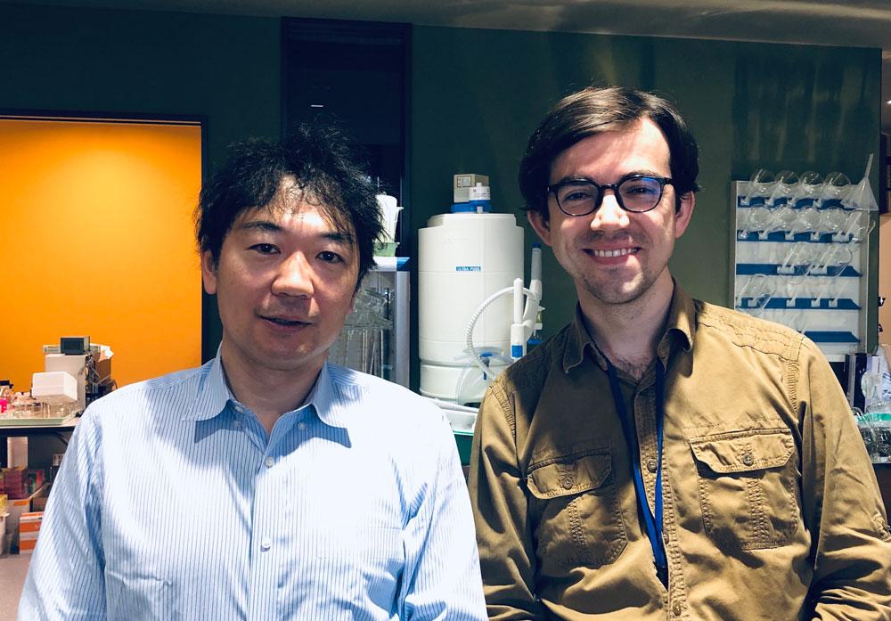 Takeshi Sakurai ile orexin sistemleri ve bilim kariyeri üzerine özel bir söyleşi