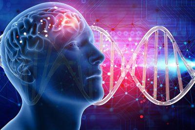 Bilim insanları zekâ ile ilgili 1000 yeni gen buldu